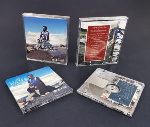 The Water Boatman MiniDisc by Language of Prairie Dogs